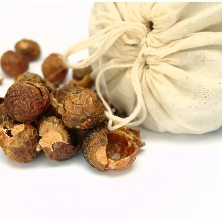 What are Soap Nuts