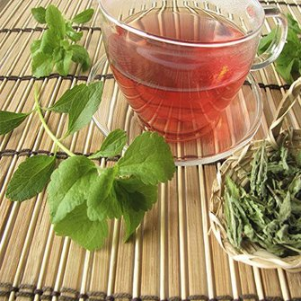 Stevia en gezondheid