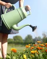 Sparkle Style Gieter groen