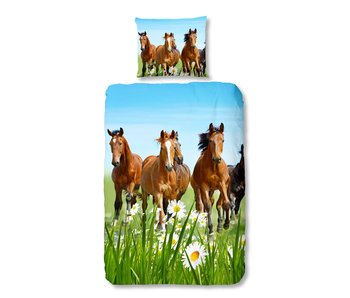 Good Morning Horses (Multi)