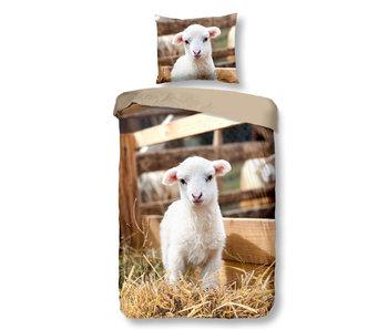 Good Morning Lamb (Multi)