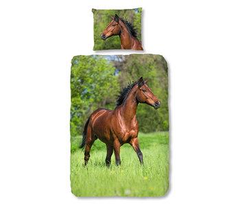 Good Morning Running Horse (Multi)