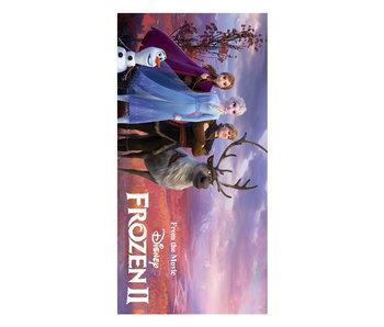 Frozen II Strandlaken Journey (Multi)