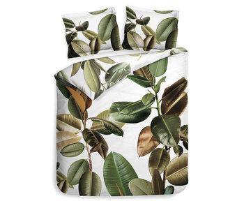 Heckett & Lane Bladel (Leaf Green)