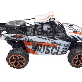 Amewi Rc Sand Buggy Dive 1:18