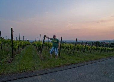Weingut Engelhard