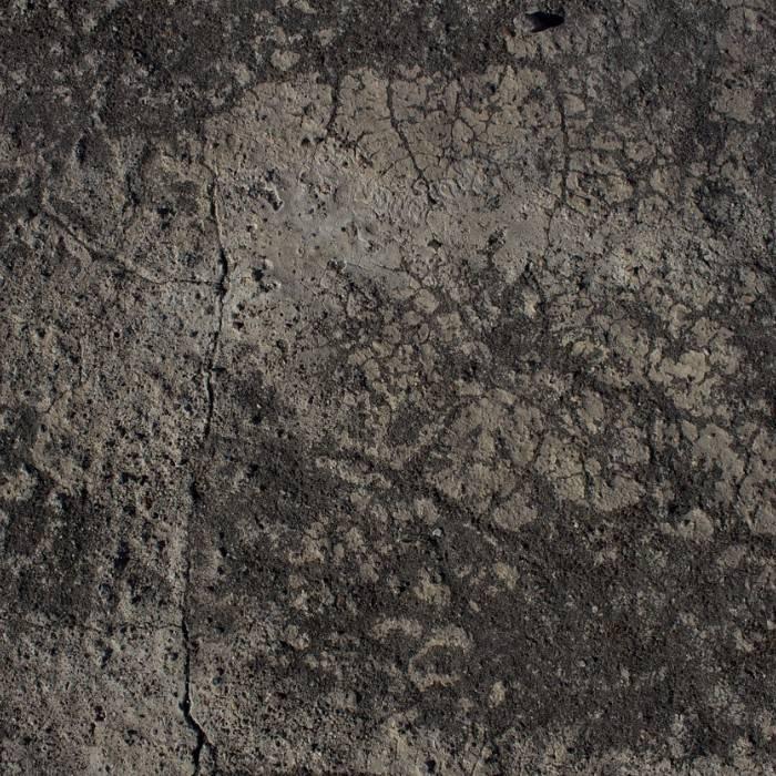 Potting Soil 4