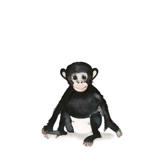van Dijck Illustratie Iris van Dijck 'Joe' (baby Chimpansee)