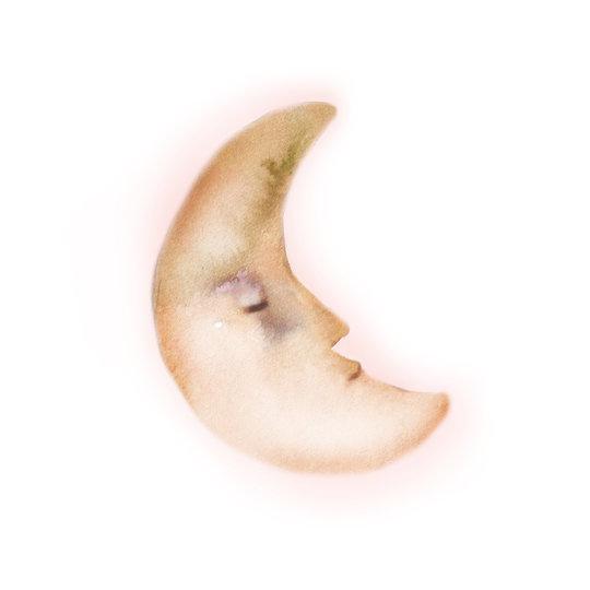 van Dijck Illustratie Iris van Dijck 'De maan slaapt'