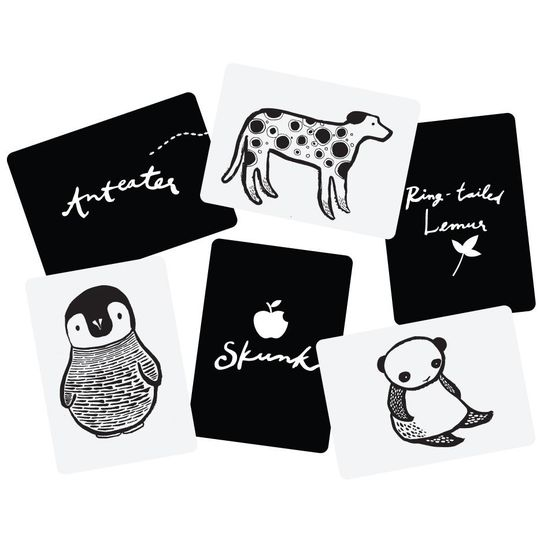 wee gallery art cards black and white animals