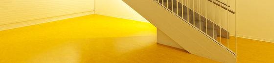 Pvc-vloer schilderen