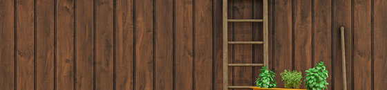 Steigerhout Beitsen