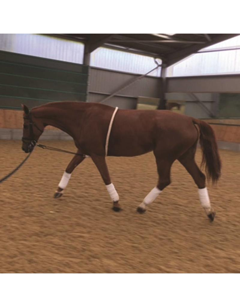 The Mark Todd collection Lunging aid