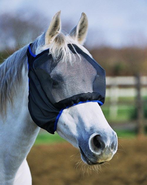 Het juiste  vliegenmasker kiezen voor je paard of pony