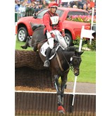 Premier Equine AIRtrax eventing boots - voor