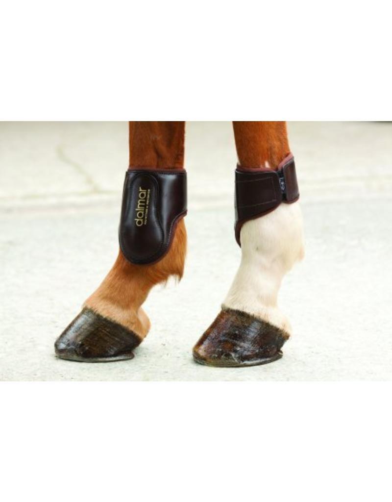 Dalmar Fetlock boots