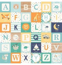 Echo Park Hello Baby Boy Cardstock 12x12  Alphabet Blocks