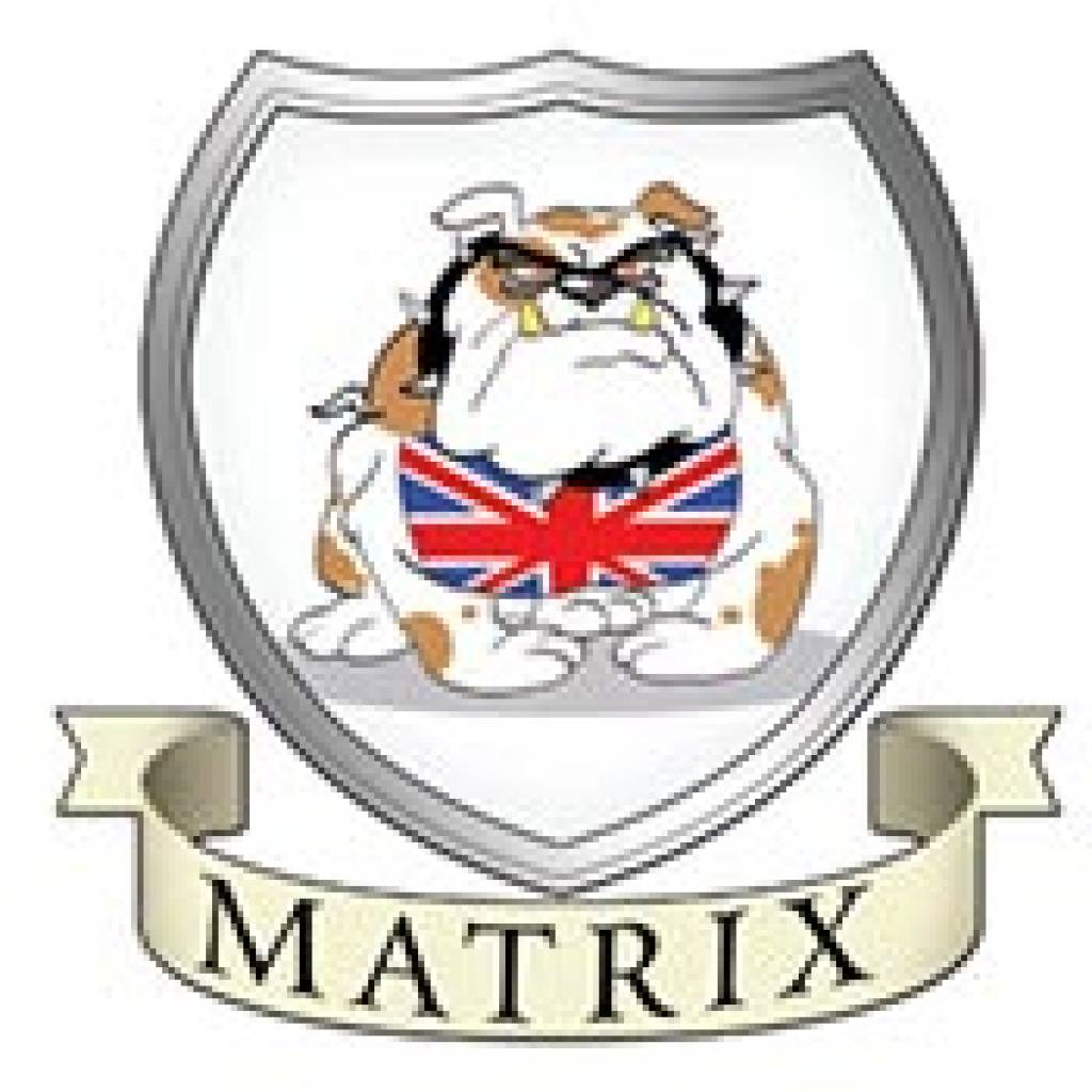 Matrix innovations