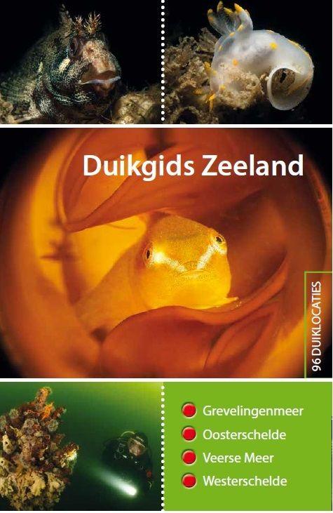 Duikgids Zeeland