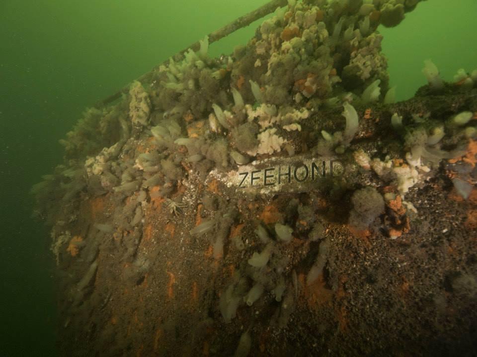 wrak zeehond scharendijke duikwrak grevelingen