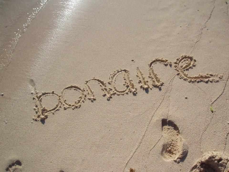 De mooiste snorkelplaatsen van Bonaire