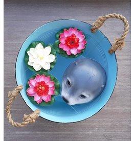 Pakket zeehond