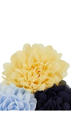 Creamie hairpin flower yellow