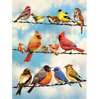 Cobble Hill Cobble Hill puzzel - Birds on a wire 500 stukjes