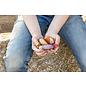 Grapat Grapat Insecten 19-209