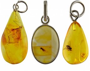 Amber with insect pendants