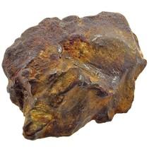 Gebel Kamil meteoriet 267 gram !