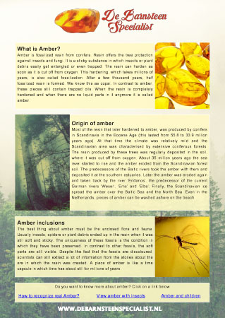 Amber Info sheet