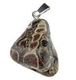 Turitella or snail shell agate
