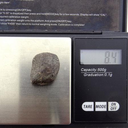 Georiënteerde NWA 869 chondriet meteoriet