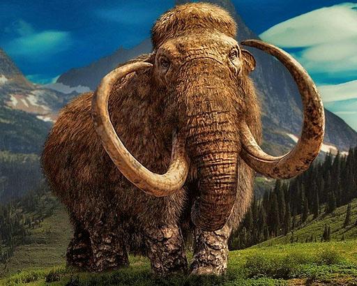 De Mammoet en Mastodont in Nederland