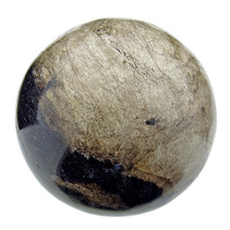 Fossilized palm root sphere diameter 6 cm