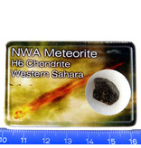 h6 Chondrite meteorite in collection box