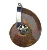 Beautiful fossil ammonite pendant from Morocco