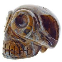 Skull van tijgeroog