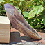 Powerful amethyst cathedral or elestial point, 365 grams