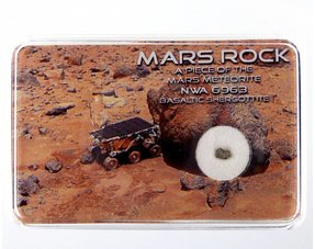 Mars Meteorite