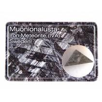 Muonionalusta meteorite in displaybox