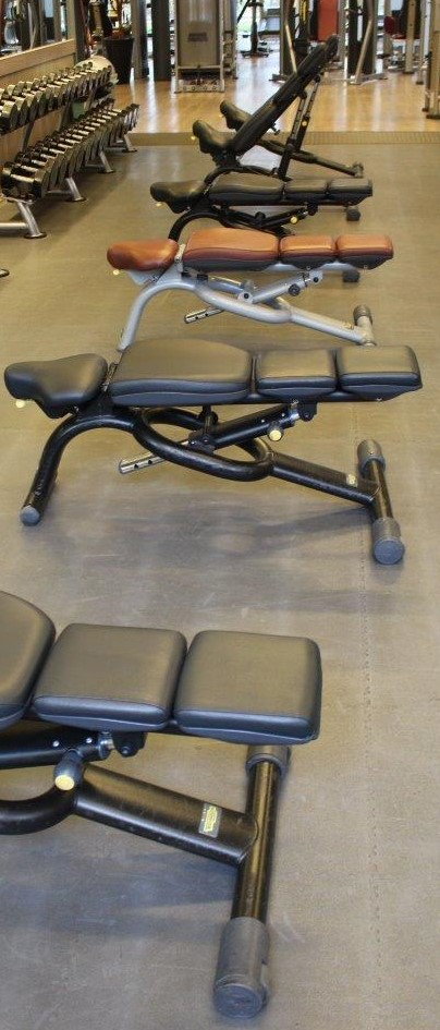 Technogym Selection Line Adjustable Benches