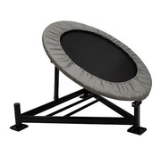 Fitribution Medicine ball rebounder