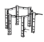 Hex functional training  rig