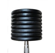 Fitribution Mancuernas clásicas de hierro 22-30kg 5 pares