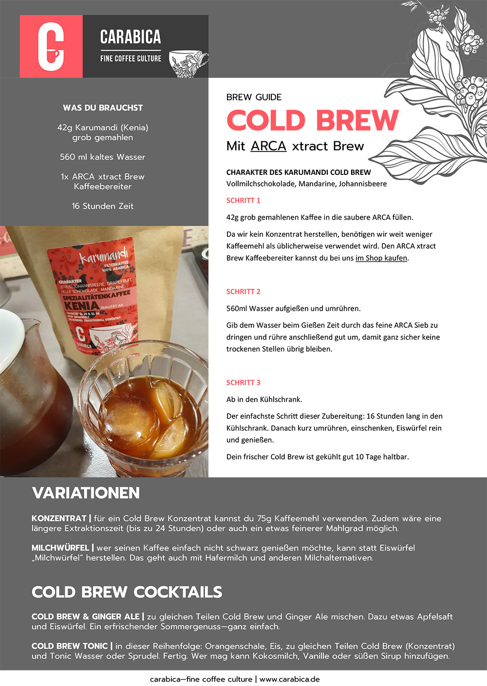 Cold Brew Guide mit ARCA Carl Henkel Brewers