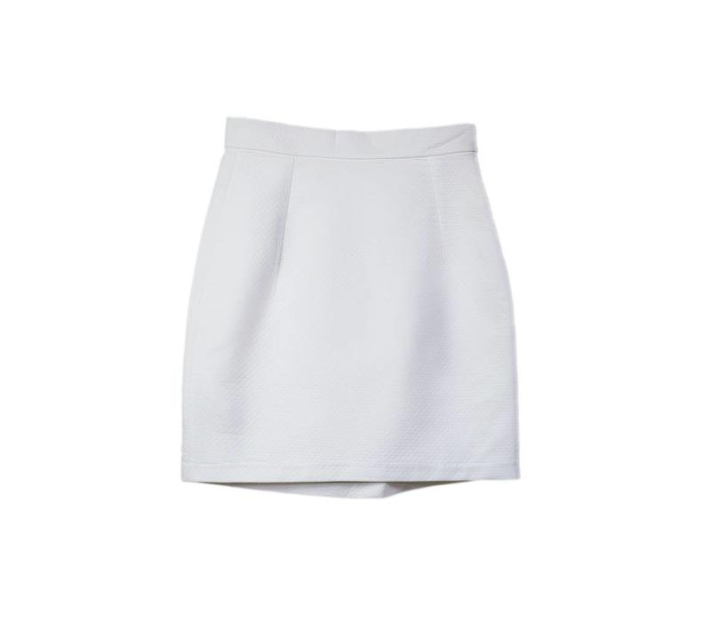 Skirt with pleat