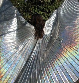 Schöne Isis Wings in silber