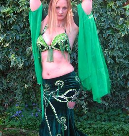 Belly dance costume in green/silver